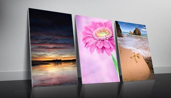 canvas-prints-570x330